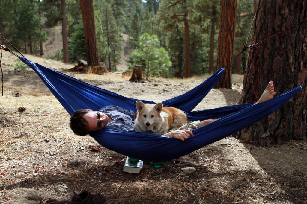 hammock, hammock bliss, camping hammock