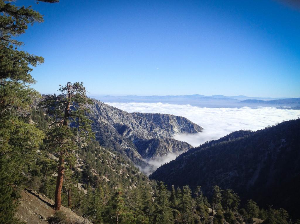 view cucamonga peak trail