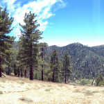 Panorama of our site and Mt. Baden-Powell.
