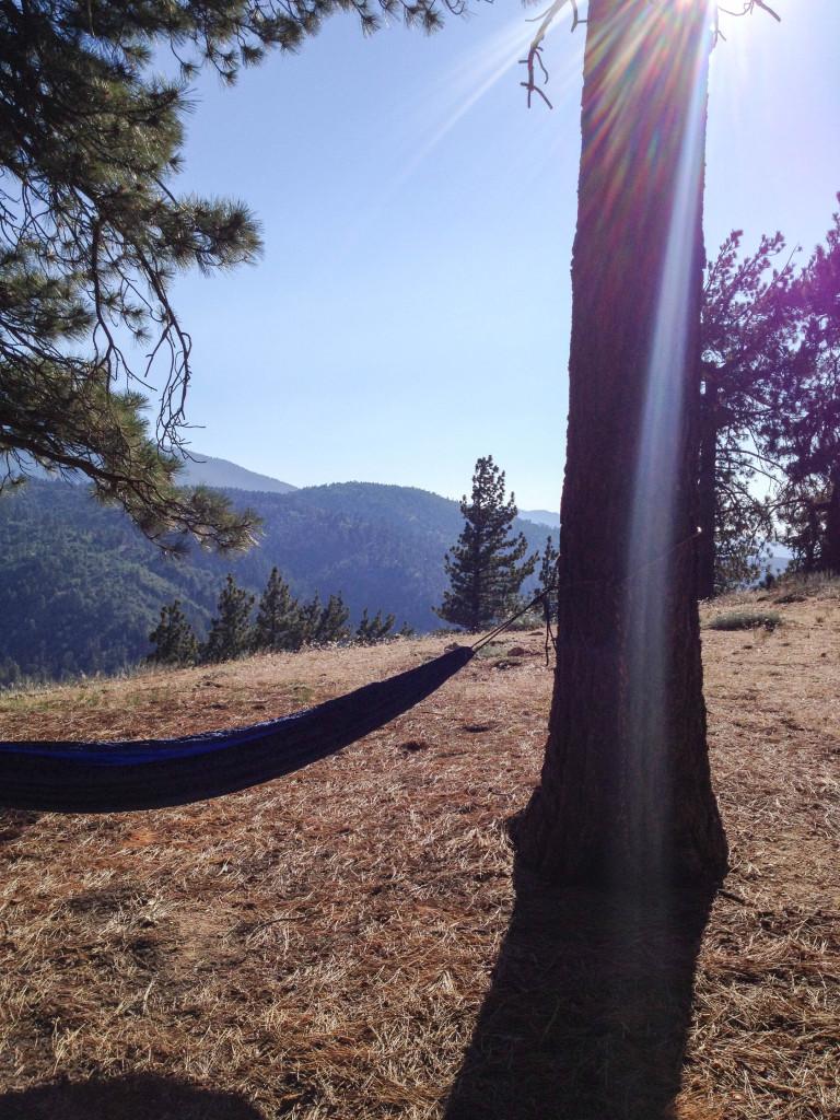 hammock table mountain ca